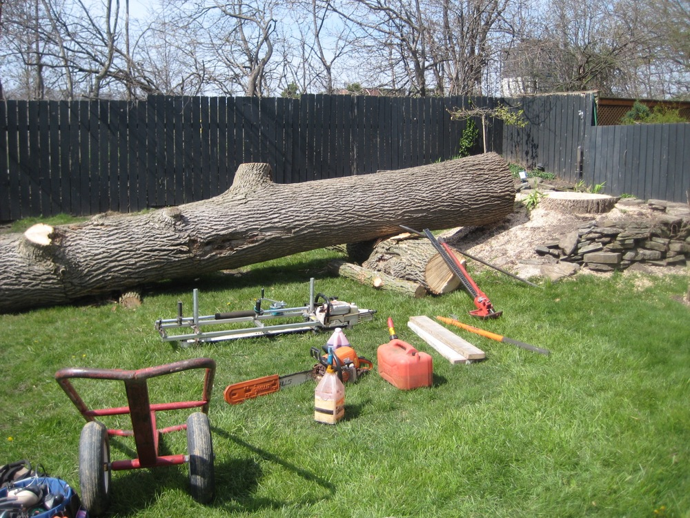 The tree as we found it: an arborist had already come in, de-limbed the tree and 'dropped it' in the backyard. Here you can see the tools of the trade: cart for hauling HEAVY wood slabs, smaller chainsaw for trimming the log, larger chainsaw in the 'Alaskan Mill', gas, oil, and jacks and bars for manipulating the log.
