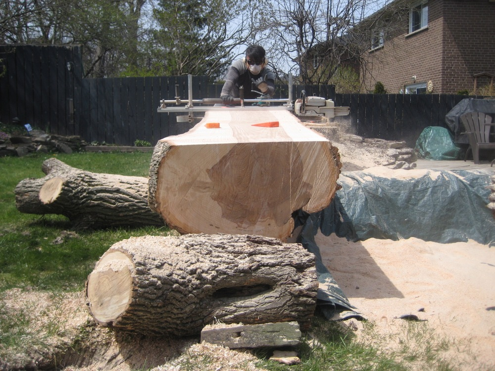 Here is the log with the first cut removed. Chong is now beginning the second cut. See how the mill rides on the first cut? This is the basic process. Each cut rides on the next. The chainsaw which is equipped with a special rip blade, mills down the length of the tree, freeing each slab. Each cut takes around 20-30 minutes. Its not easy! The log took all day!