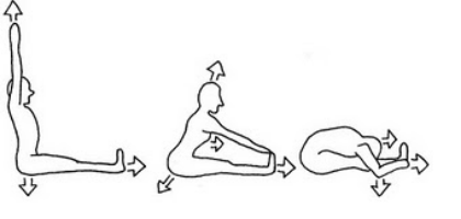 SITTING FORWARD BEND – PASCHIMOTHANASANA.png