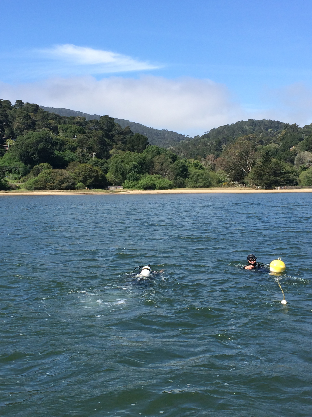 Grant Susner and David Dann deploying sensors in Tomales Bay