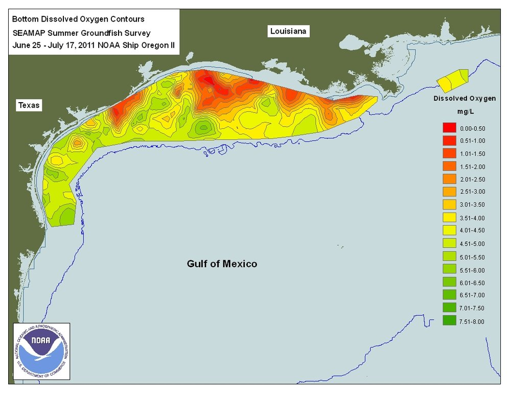 Gulf of Mexico Hypoxia in 2011. Image from NOAA data, available on Wikipedia.