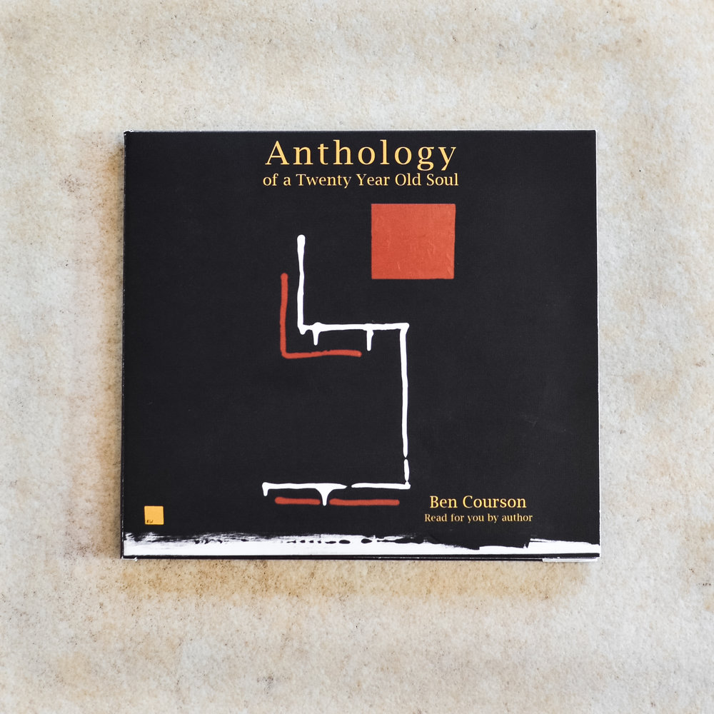 Anthology of a Twenty Year Old Soul audiobook