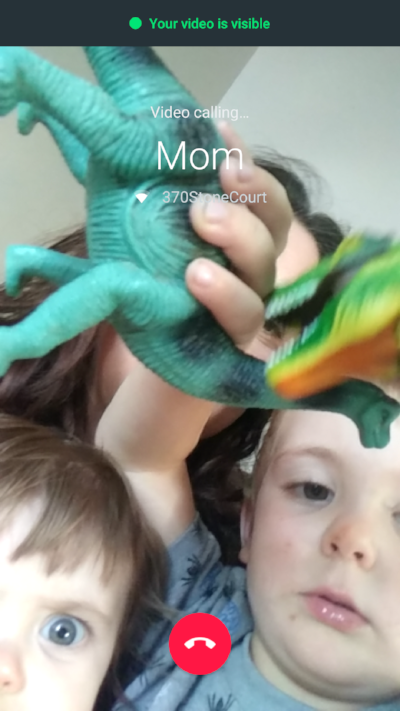 when you try to video chat with your mom but your son want to show off his dinosaurs