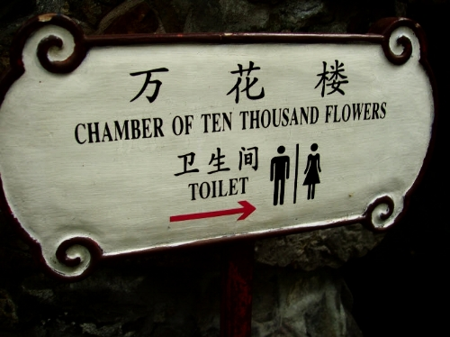 Chamber or 10,000 Flowers Toilet