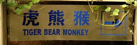 Tiger Bear Monkey