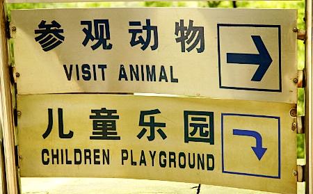Visit Animal