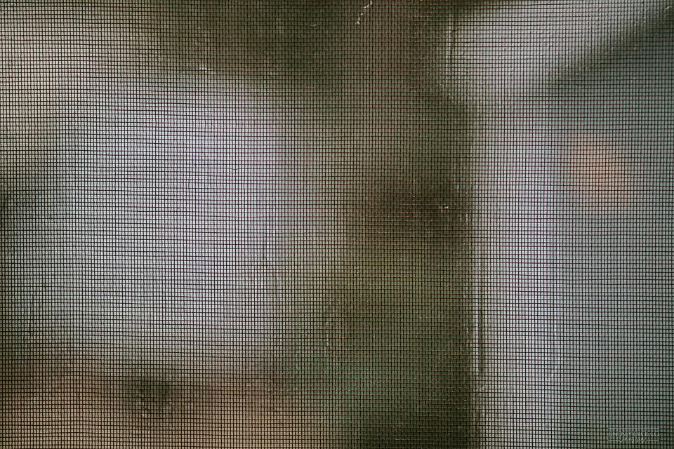 60/365 Rain, rain, go away.