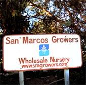San-MarcosSign170.jpg