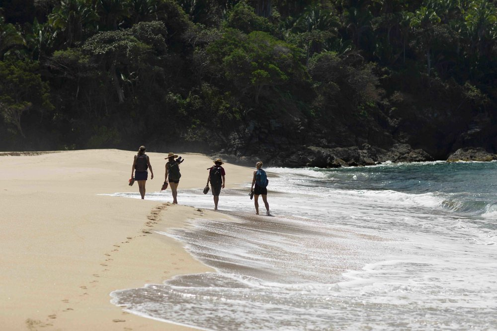 BeachHikers.jpg