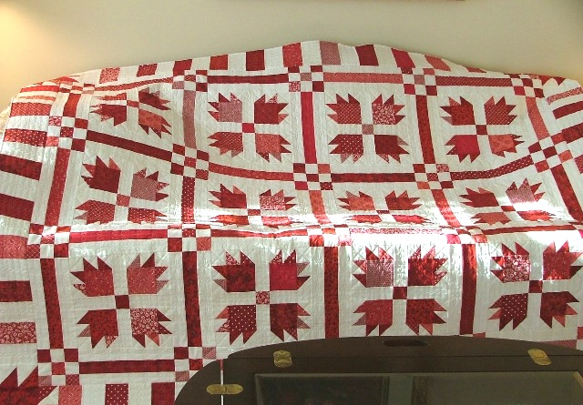Making One Pattern Work Overtime — Candy Apple Quilts : bear claw quilt - Adamdwight.com
