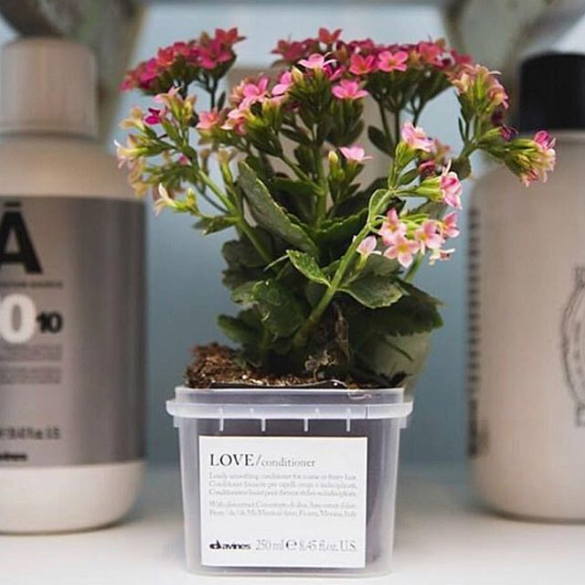 We love sustainable beauty and so does Davines! Look at these beautiful repurposed product containers... Don't you just love a good DIY?