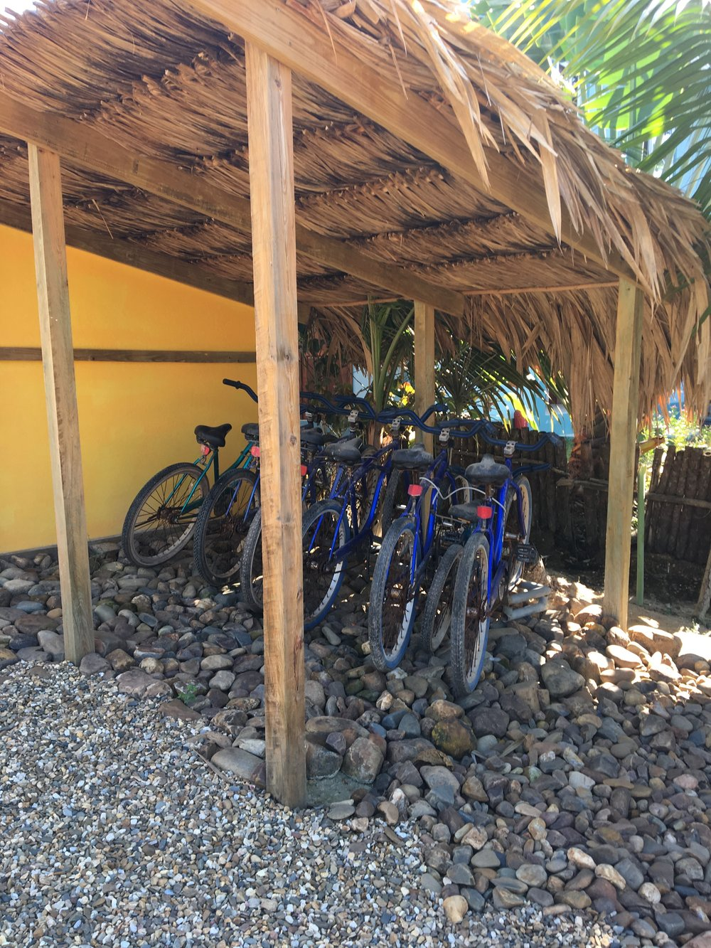 Bicycle Shed