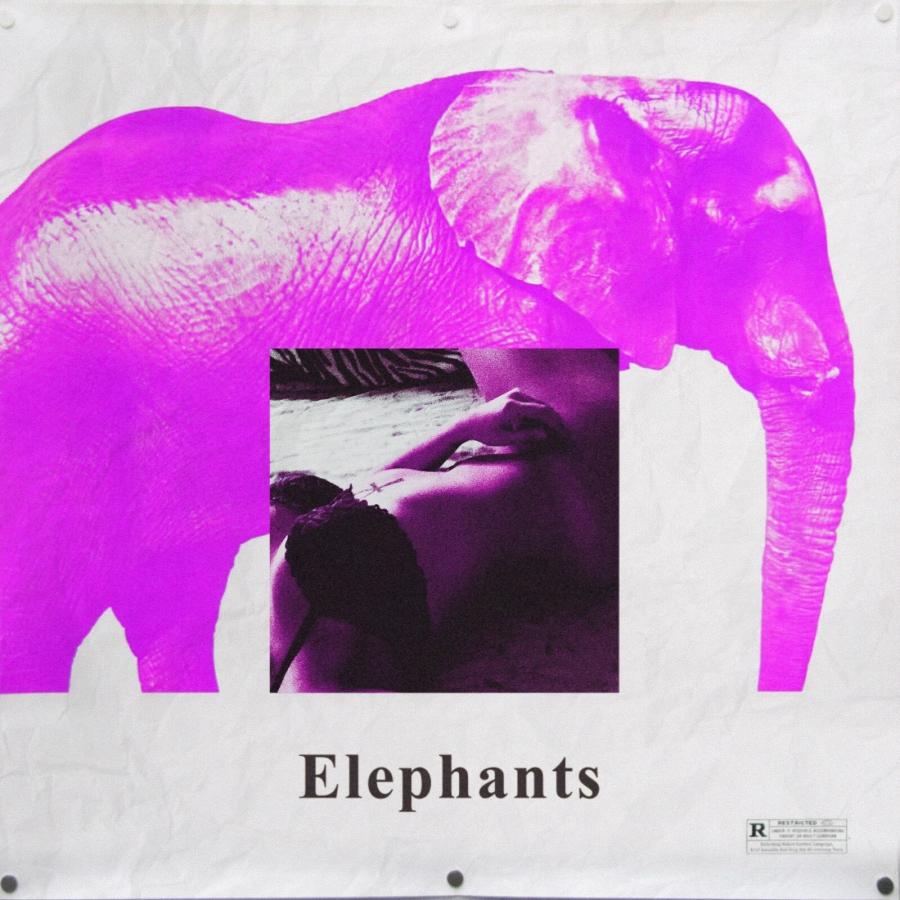 Eso Elephants.JPG