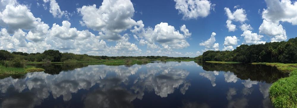 2015-08-22 13.51.02 Myakka Lake.jpg
