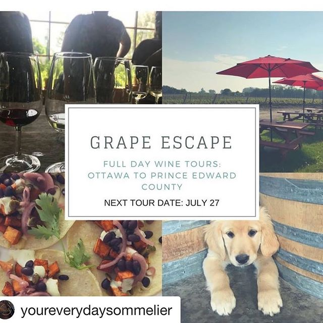 #Repost @youreverydaysommelier with @get_repost ・・・ What a beautiful day to book a wine tour!  Next Wine Tour Date: July 27  Need a mini getaway in the summer but don't want to have to fly or book overnight accommodations? Book a full day wine tour with us (Your Everyday Sommelier) from Ottawa to Prince Edward county.  Tours include: • Coach service with fun wine trivia • Catered lunch from @thecookerybistro • Wine tasting with winery owners/wine makers at 5 wineries • Catered dinner • $190 all in (includes tax) If you have a group of 15 or more you can book your own private tour, please contact me if you have any questions. www.youreverydaysommelier.com . . . .