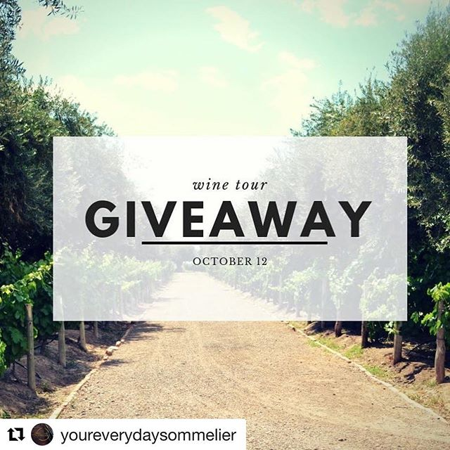 Visit @youreverydaysommelier for details on how you can win a day of Wine!!!! 🍷 🍷 🥂
