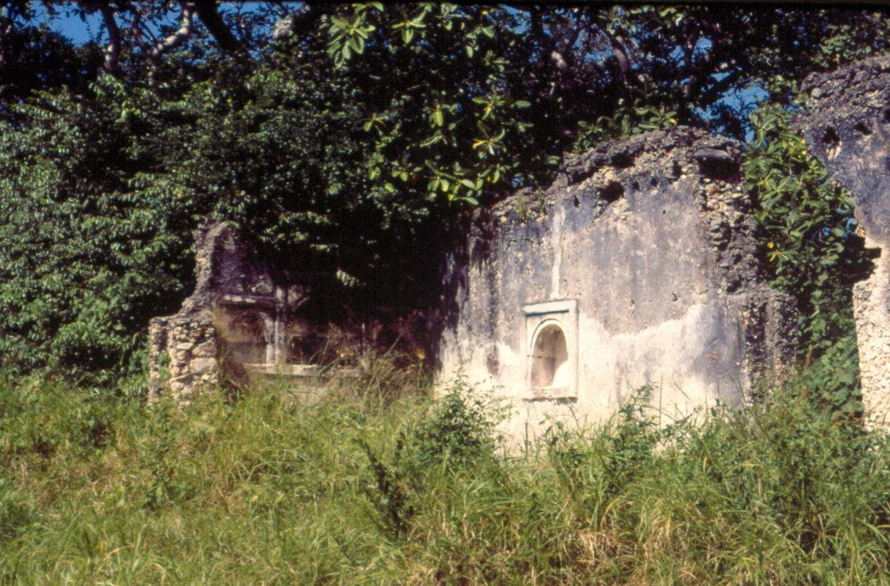 Low Res Shanga mosque ruins with vegetation, Shanga, Pate Island, Ke.jpg