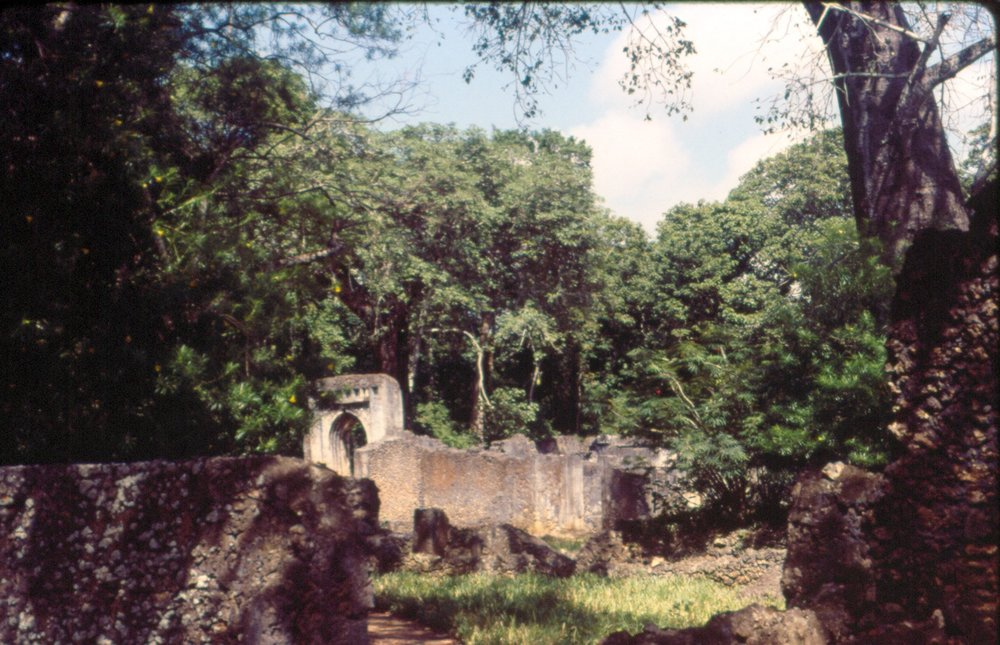 Gedi ruins,  Kenya, Summer 1994 Photo by Matt Curtis at 1200 (2).jpg