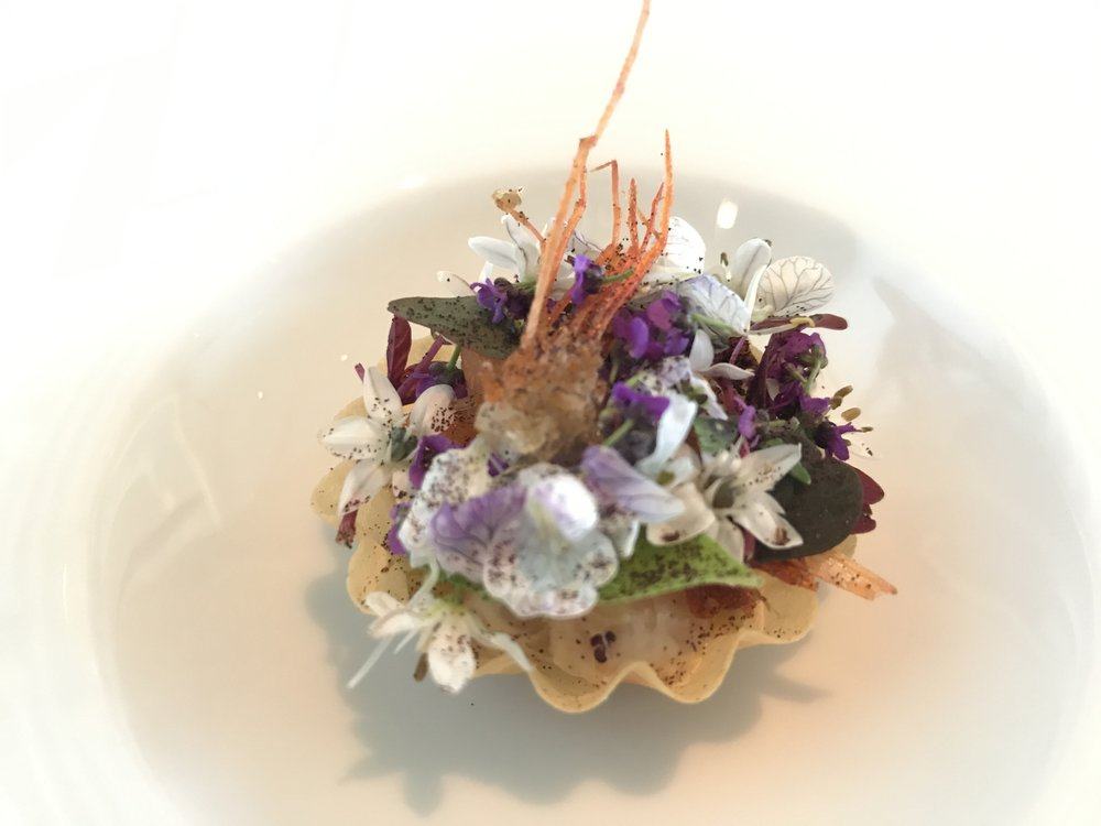 Tartlet with Fjord Shrimp, Sol, & Pickled Elderflower - Are you sensing a pattern here? Almost every dish had some sort of flower on it. The Danes love flowers on their food --it provides a pop of color and flavor to the dishes. Plus everyone knows the saying,