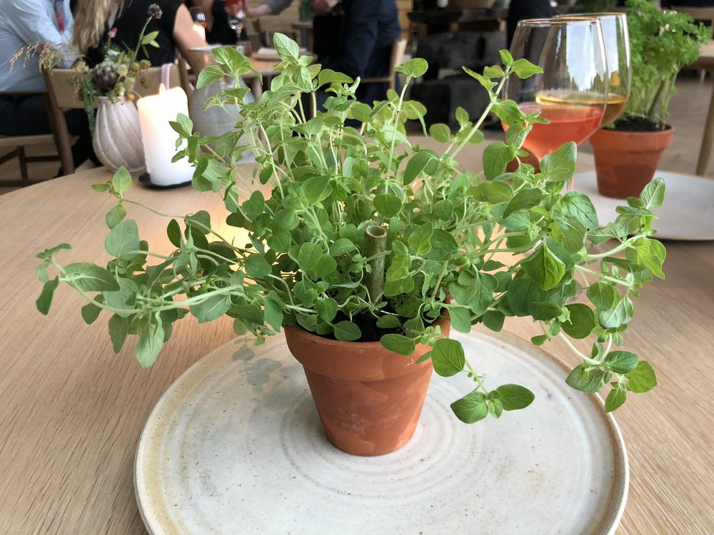 Potato magma - Boom. As soon as you sit down, a potted plant with a straw is put on your plate. We were instructed to drink the new potato soup and smell the herbs simultaneously. This dish was a full sensory experience, and such an exciting start.