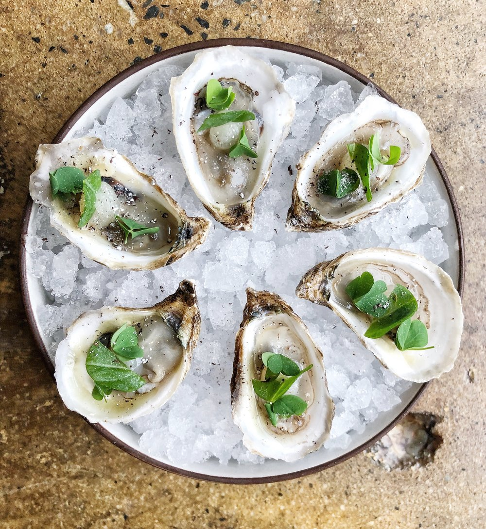 Oysters - yuzu, grains of paradise, oyster leafSmall oysters pack a lot of flavor, especially when you add yuzu and sprinkle on some grains for texture.