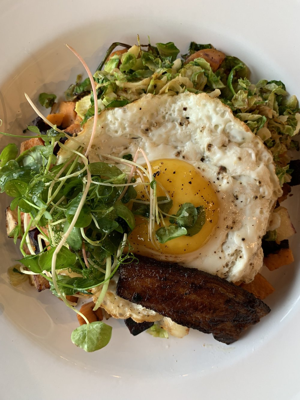 Modern Southern - Mixed potatoes, brussels sprout and apple hash, house bacon or tempeh sausage, fried eggHave you ever seen a fried egg so perfect?