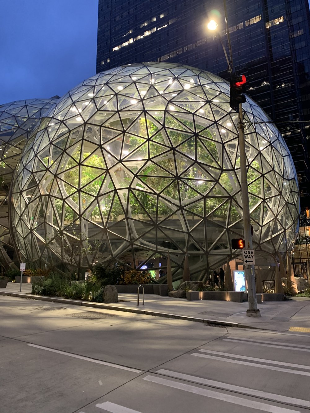 These are the    Amazon Spheres    – no  where near JuneBaby, but aren't they cool?