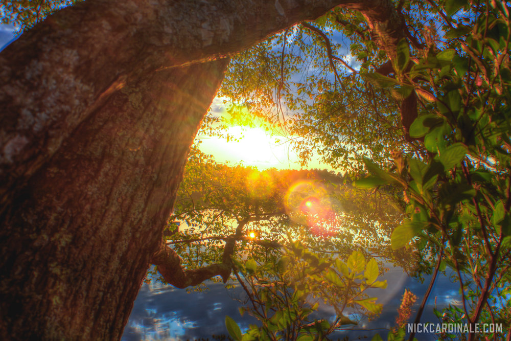 20140808-IMG_1902_3_4_tonemapped-watermarked.jpg