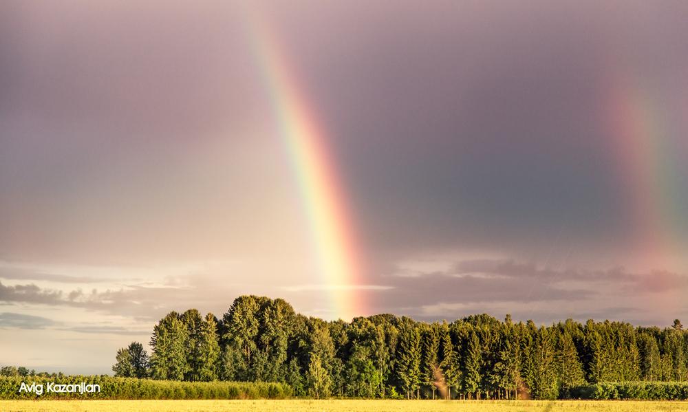 rainbowwwwwwww-w-w-w-w-w-w.jpg