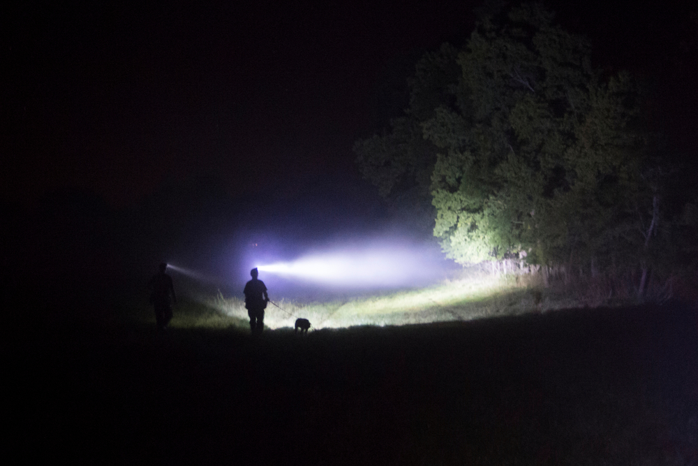Hunters walk their dog to a new drop location during a hot and foggy summer night's competition hunt with a cash purse in Fayette, Mo.