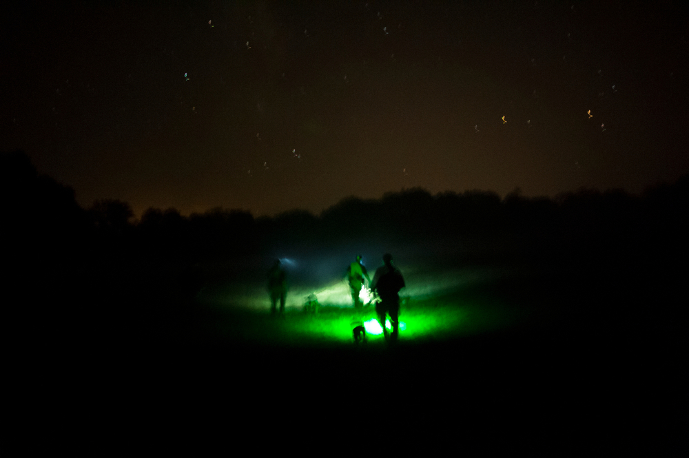 Hunters, using green lights to prevent fatigue to their eyes and see contrast in the dark, cross a cattle pasture outside of Fayette, Mo.