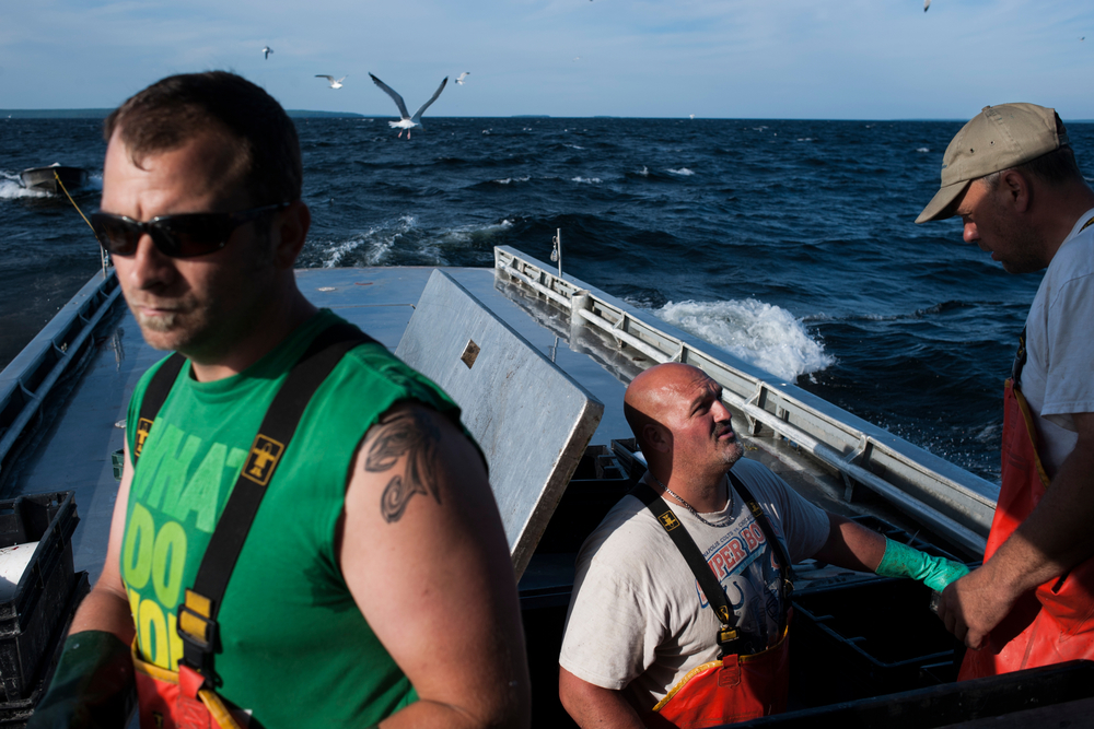 Eric Weborg, left, and his crew mates Big Jim, center, and Slim, work on cleaning fish and stowing them in ice below deck on the boat, Heather J., after a morning fishing. The Weborg family has been fishing the area for generations but environmental, economic, and political factors have put strains on business.