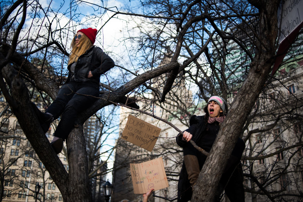 People climb trees during a protest in support of refugees in Battery Park in New York, NY on Saturday, January 29, 2017. Credit: Mark Kauzlarich for CNN