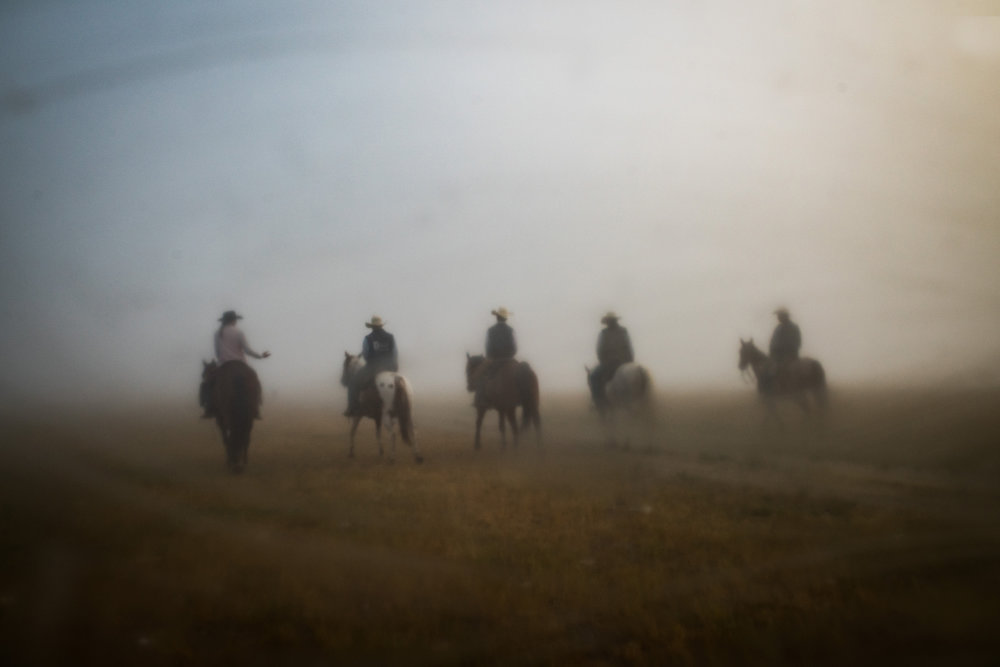 """45º25'37.9""""N, 102º17'10.7""""W. 113 miles from the nearest McDonald's.  The Arneson family and their employee Riley Cihak ride their horses through thick morning fog on their ranch in the old town of Chance, SD on July 31, 2017."""