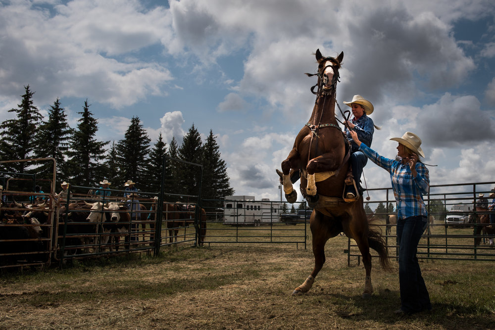 """45º31'30.0""""N, 102º28'11.9""""W. 111 miles from the nearest McDonald's.   A horse rears up as a young woman gets ready to take off for her turn at goat tying at a rodeo in Bison, SD."""