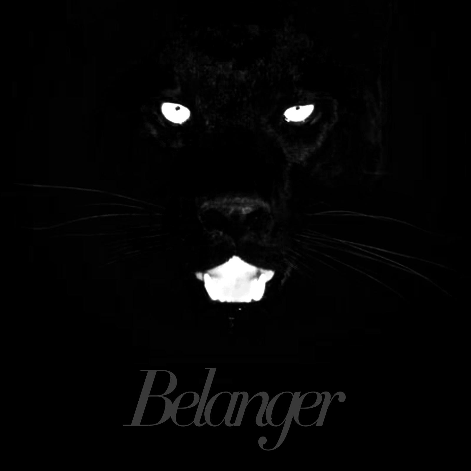 Belanger // Calico