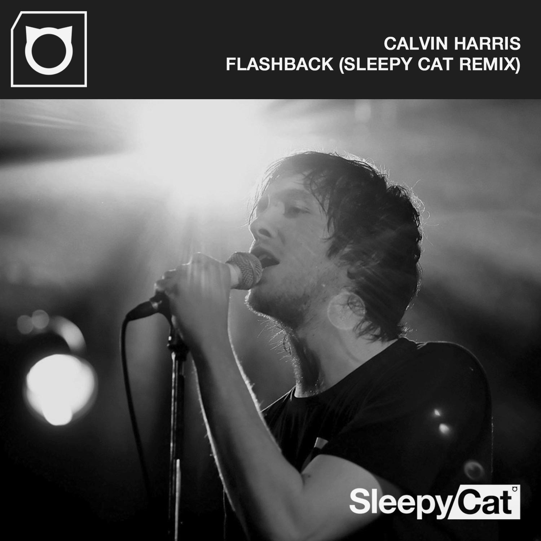 Flashback | Sleepy Cat Remix