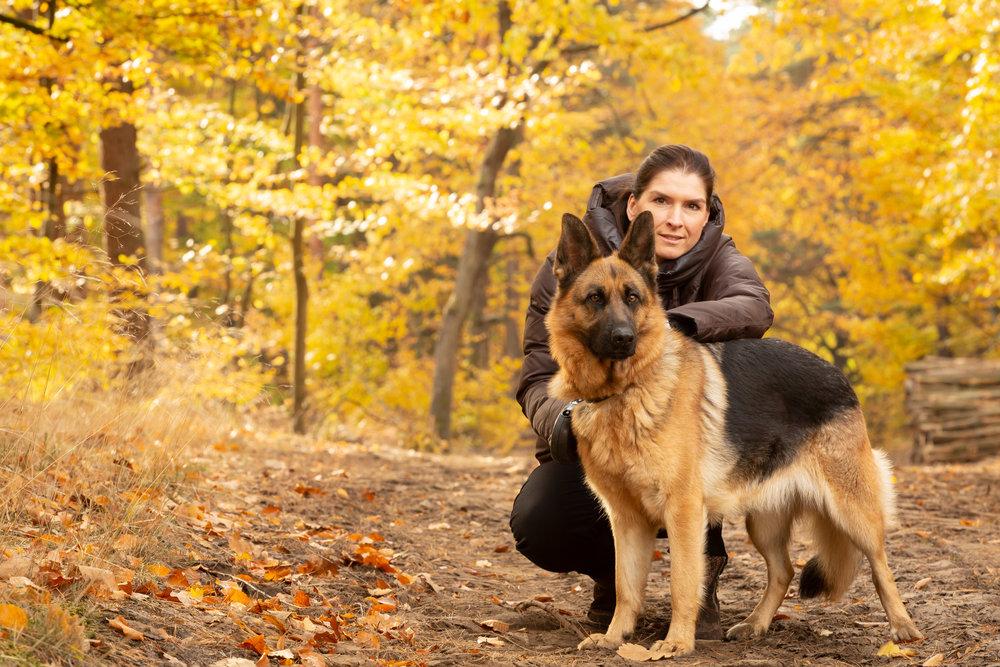 sydney-pet-photographer-photography