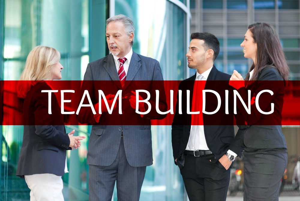 Incredible resources to move a gathering of talented individuals into a high performing team.