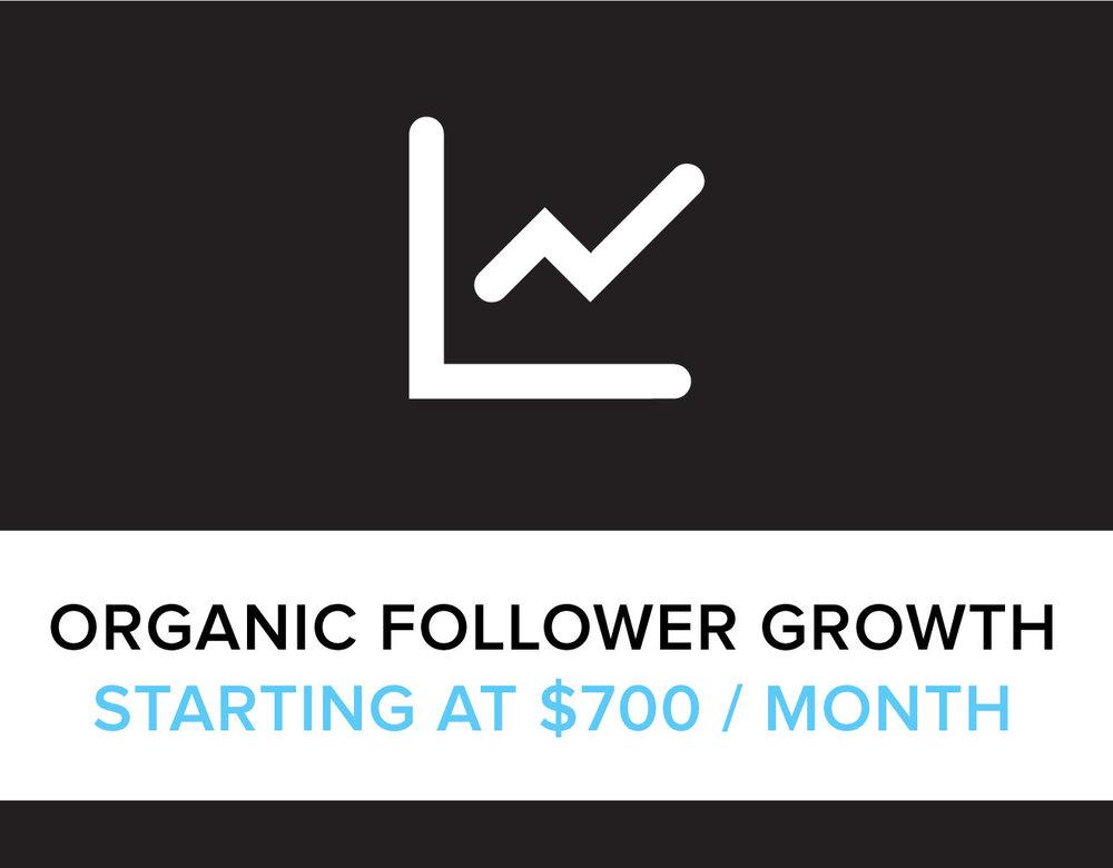 organic_follower_growth.jpg