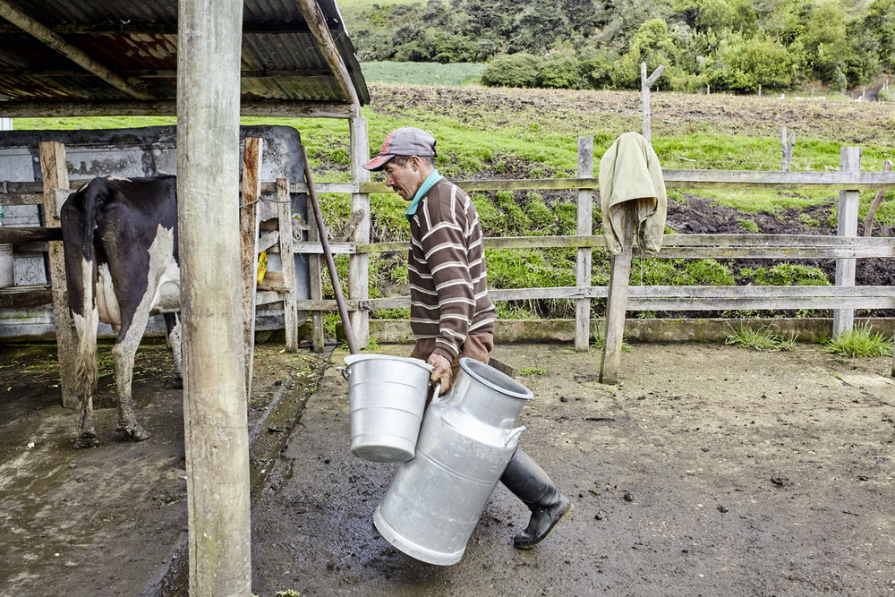 Poverty reduction_Colombia_diary_milk_2016-07-15_Columbia_MG_9982.jpg