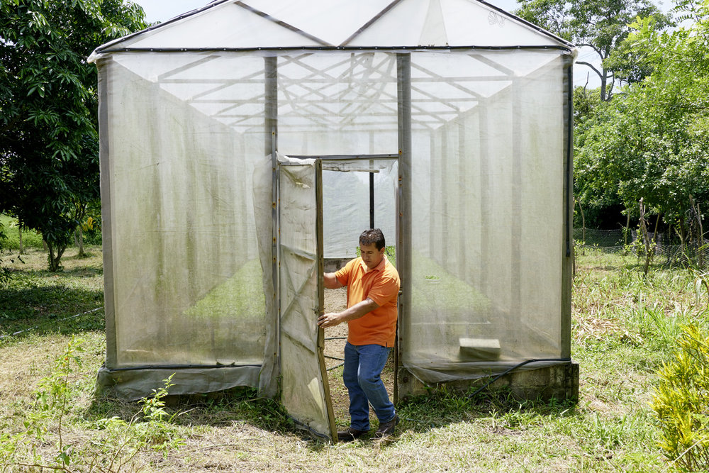 Inequalities_El_Salvador_Women-greenhouse-building_20160722_El_Salvador_DSC08907.jpg