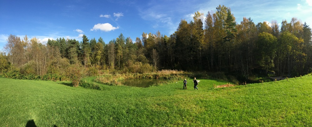 The woods behind Oksana's father's house in Kingisepp.