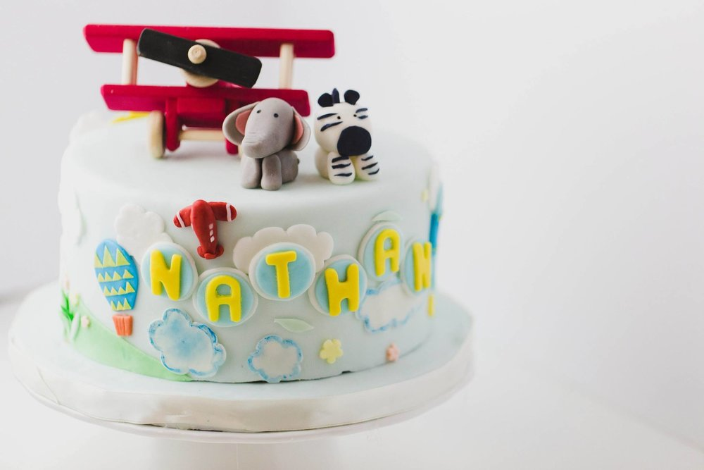 Animal And Air Plane Cake by Peggy's Kitchen
