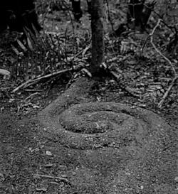 sand spiral .jpg