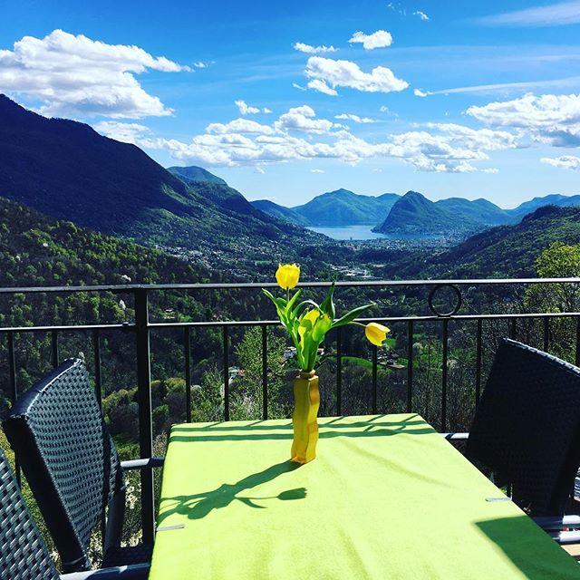 Primavera alla #Locanda del Giglio#primavera#lugano#lvga#hotel#panorama#boschi#lagoceresio#fiori#mangiresano#km0#slowfood#sole#ristorante#capriasca#