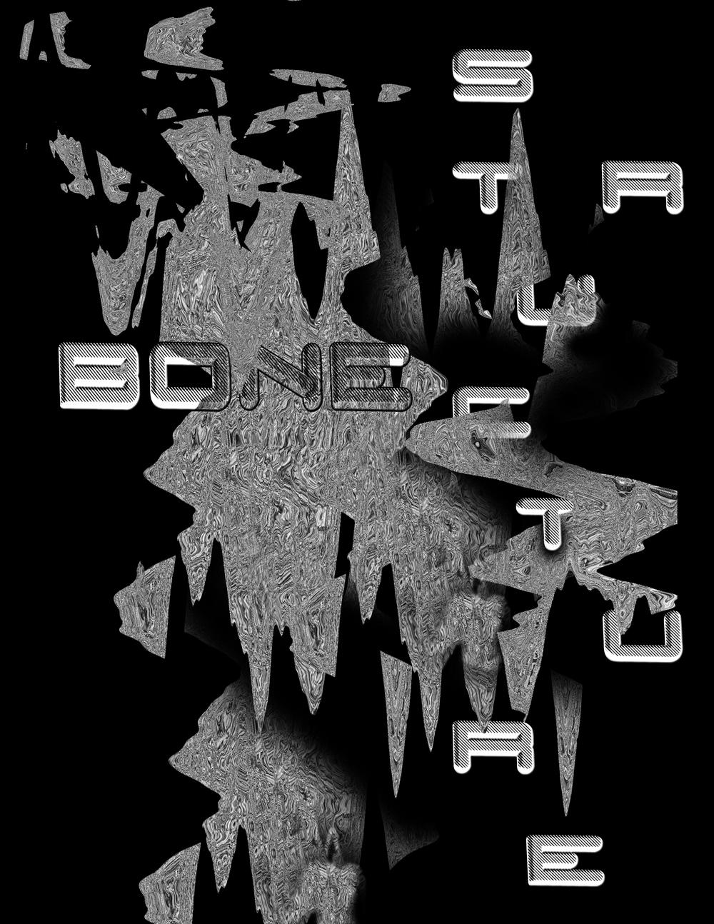 BONE STRUCTURE_3.jpg