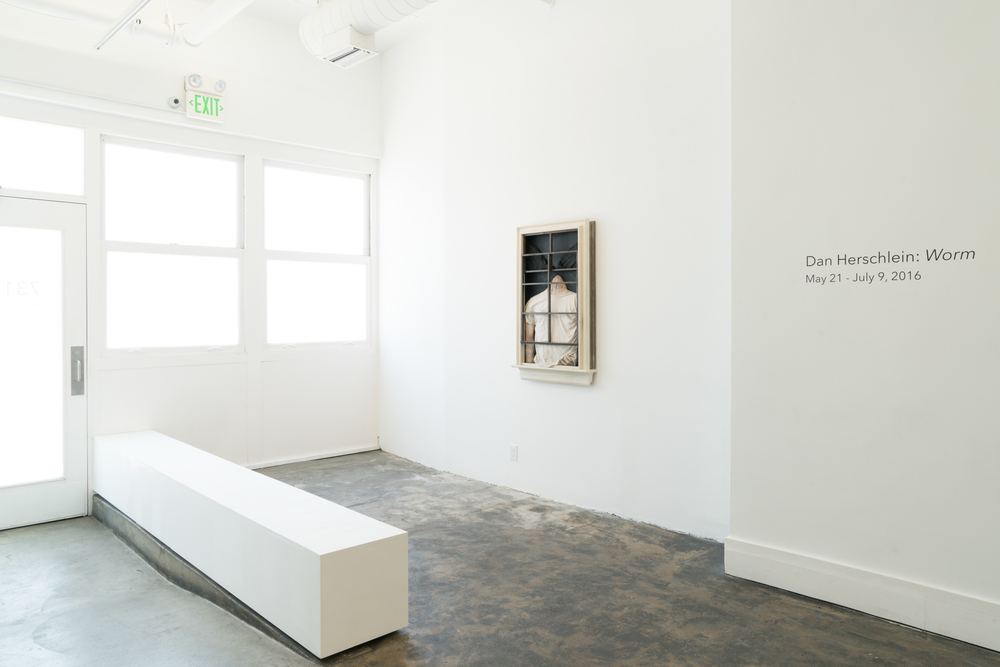 Dan Herschlein - Worm - AALA Gallery - 2016 - Install Images - Medium Res-1.jpg