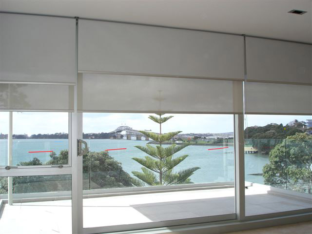 SP Blinds.  Duo Blinds give different options for block out or light filtering.
