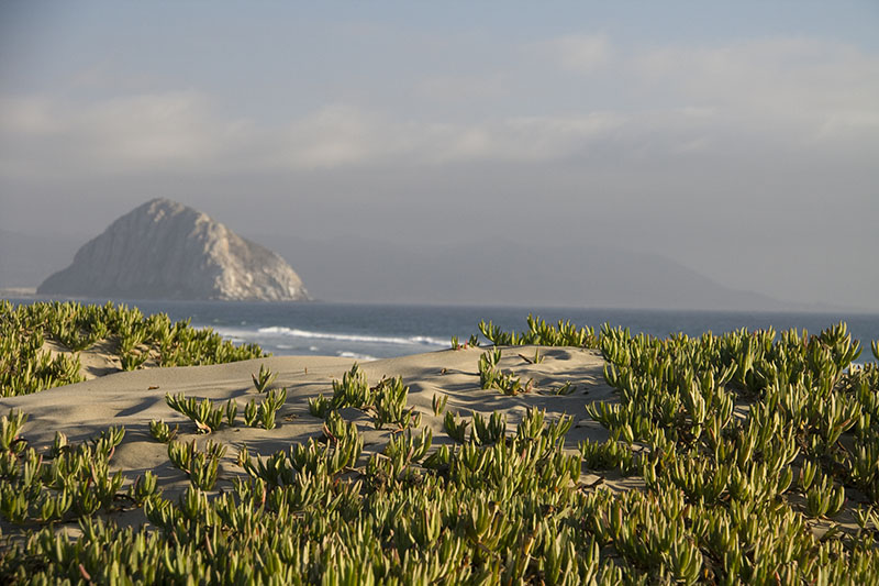 airstream rental san diego morro rock.jpg